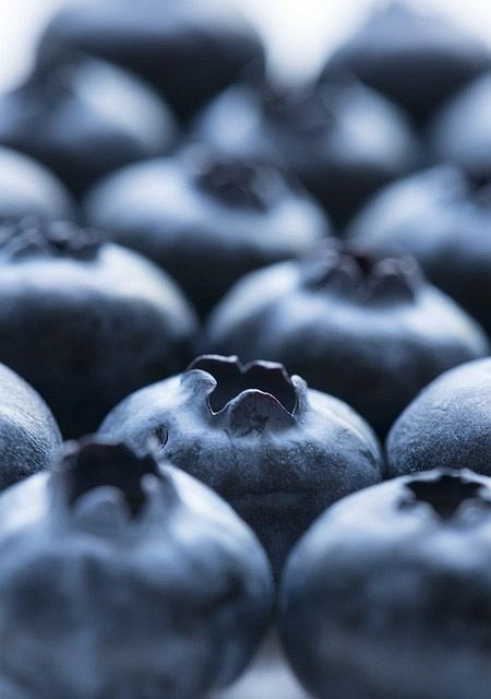 Low Carb Blueberry Chia Smoothie. Smoothie Intro. Get Wonderful Taste And Nourishment From Smoothies. #smoothieaday