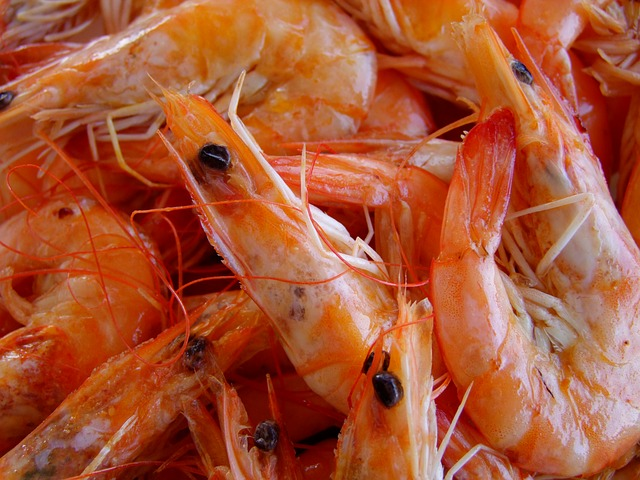 Easy Shrimp Recipes for Weeknight Dinners